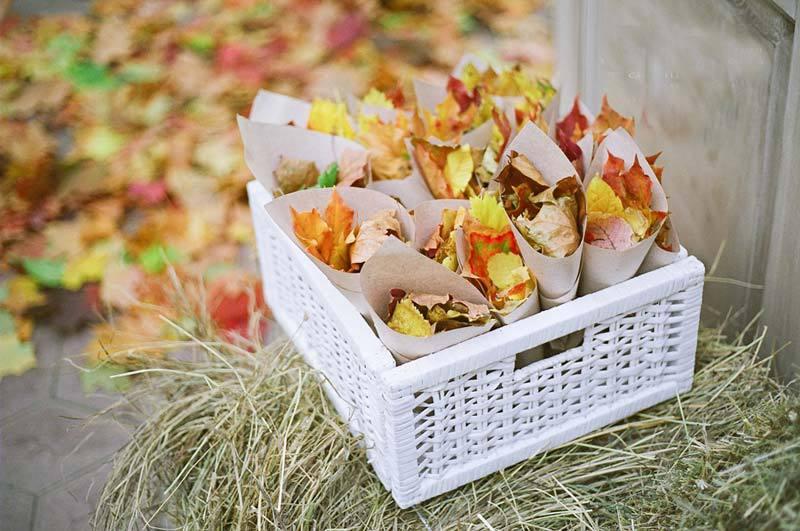 Оформление в стиле осень
