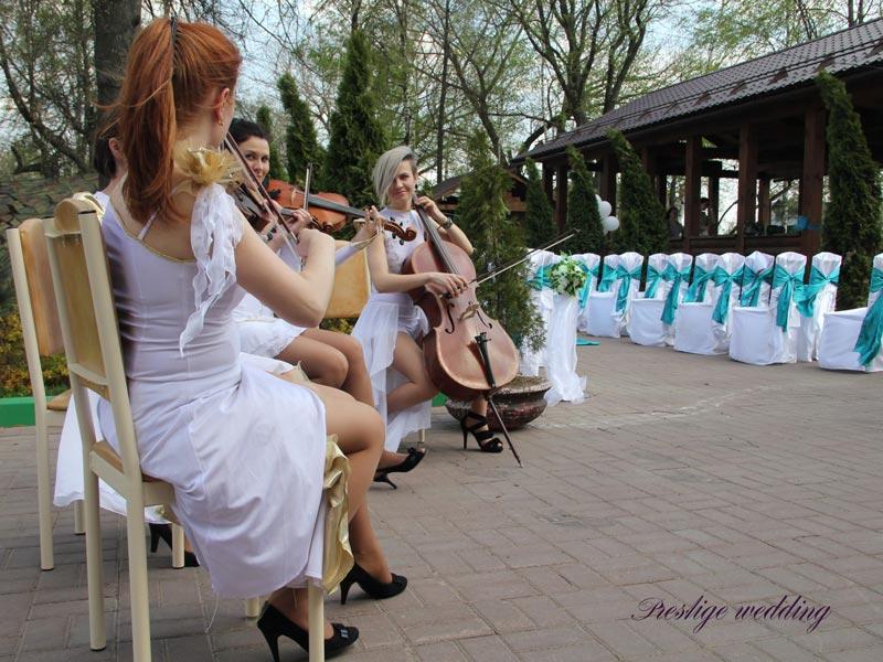 Квартет на свадьбе
